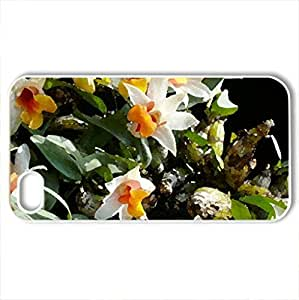 beautiful orchids - Case Cover for iPhone 4 and 4s (Flowers Series, Watercolor style, White)