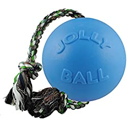 Jolly Pets 6-Inch Romp-n-Roll, Blueberry
