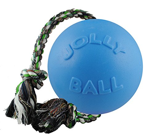 Jolly Pets 8-Inch Romp-n-Roll, Blueberry