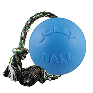 Jolly Pets Romp-n-Roll Rope and Ball Dog Toy, 8 Inches/Large, Blueberry
