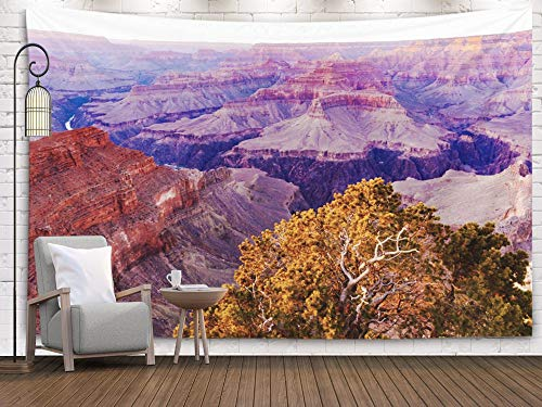 Bisead Wall Art for Bedroom Tapestry, Map Art Tapestry 80x60 inchs The Sunsets Point Popular Its Canyon amp to The Center Along South Rim Grand Canyon Wall Hanging Gifts for Bedroom Dorm Décor