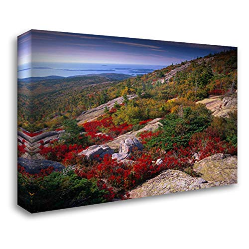 (Atlantic Coast from Cadillac Mountain, Acadia National Park, Maine 38x28 Gallery Wrapped Stretched Canvas Art by Fitzharris, Tim)