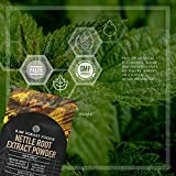 RAW Forest Foods - Stinging Nettle Root Extract