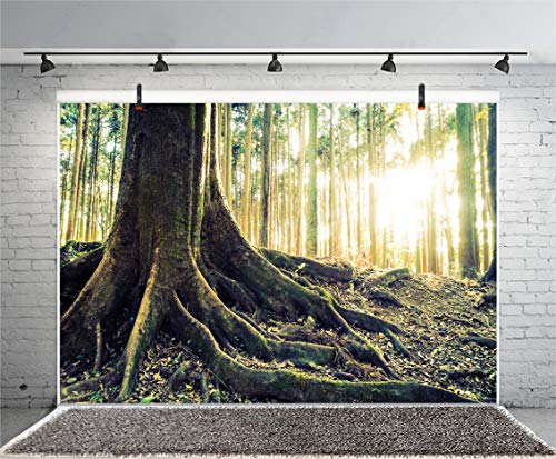 Leyiyi 10x6.5ft Enchanted Forest Photography Backdrop Spring Woodland Vintage Tree Root Trunk Western Cowboy Rural Countryside Background Nature Landscape Halloween Photo Portrait Vinyl Studio Prop -