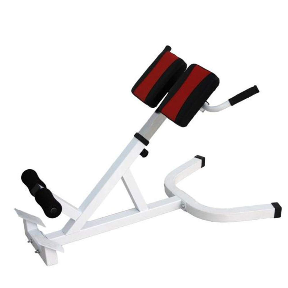 Aszhdfihas Rom Stuhl Gym Chair, Bauch-Gerät, Bauchmuskel-Stuhl, Fitness-Sportgeräte geeignet Menge  Fitness-Enthusiasten, Geschäftsleute.
