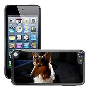 Etui Housse Coque de Protection Cover Rigide pour // M00114750 Perra Pet Colie Animales Mascotas Perro // Apple ipod Touch 5 5G 5th