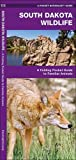 South Dakota Wildlife: A Folding Pocket Guide to Familiar Species (A Pocket Naturalist Guide)