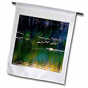 Jos Fauxtographee Realistic - Birds Flying Over Water at Baker Dam in Utah with Their Reflection on Orange, Green and Blue Water - 12 x 18 inch Garden Flag (fl_49680_1)