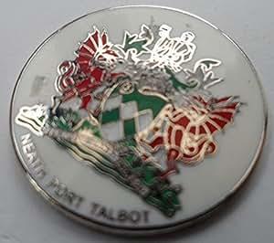 Neath Port Talbot Pin (w1919)