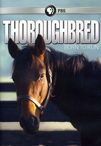 DVD : Thoroughbred: Born To Run (DVD)