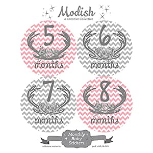 12 Monthly Baby Stickers, Deer Antlers, Flowers, Baby Girl, Baby Belly Stickers, Baby Month Stickers, First Year Stickers Months 1-12, Pink, Grey, Gray, Chevron, Deer Antlers, Girl 3