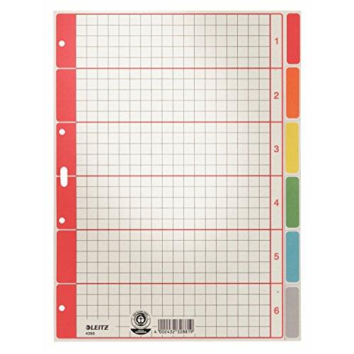 Esselte Leitz Kartonregister Blanko, A4, Karton, 6 Blatt, grau