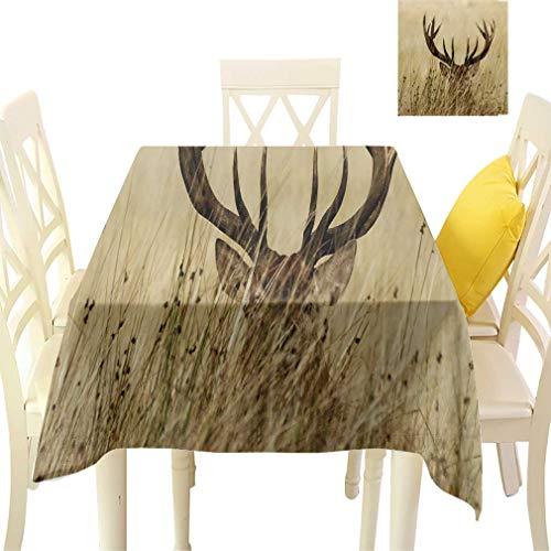 - Bohodecor Antler Decor Tablecloths, Whitetail Deer Fawn in Wilderness Stag Countryside Rural Hunting Theme Square Fabric Table Covers for Dining Room Kitchen, 36'' x 36'' Brown Sand Brown