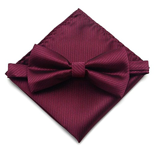 Secdtie Men's Wine Red Silk Cravat Ties Jacquard Woven Casual Bow Pocket Square ()