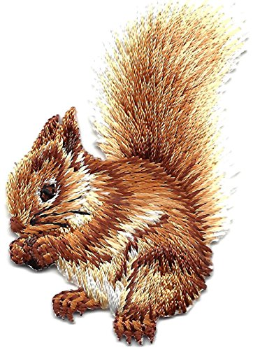 FOREST ANIMALS-SQUIRREL, BUSHY TAILED/Iron On Embroidered Applique/Cute Critters