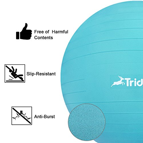 Trideer Ball Chair – Exercise Stability Yoga Ball with Base for Home and Office Desk, Ball Seat, Flexible Seating with Ring & Pump, Improves Balance, Back Pain, Core Strength & Posture(Ball with Ring by Trideer (Image #3)