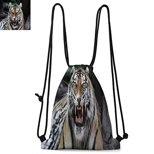 African Printed drawstring backpack Tiger Face with Roaring Wildlife Safari Savannah Animal Nature Zoo Photo Print Suitable for school or travel W13.8 x L17.7 Inch Multicolor from Strongger