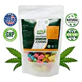 Hemp Gummies 2700 mg 90 ct | Bursting with USA Grown Organic Hemp Extract and Vitamins | Pain, Stress, Anxiety, and Sleep Relief