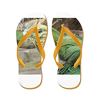 cc6572b6c87a on sale CafePress - Iguana - Flip Flops