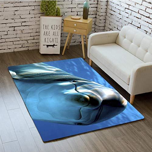 MTSJTliangwan 3D Printing Delfino Bathroom Carpet Flannel Foam Shower mat Absorbent Living Room Kitchen Door Carpet Floor -