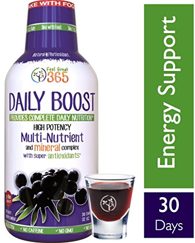 Kosher Ginseng - Daily Boost Liquid Superfood Multivitamin by Feel Great 365, with Vitamins B12, D3, E, Glutathione, Resveratrol, Milk Thistle, Green Tea, Ginseng & More. #1 Kosher, Paleo and Vegetarian Friendly