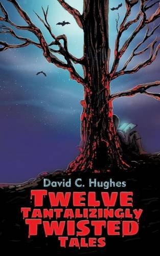 Twelve Tantalizingly Twisted Tales PDF