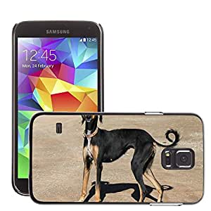 Etui Housse Coque de Protection Cover Rigide pour // M00110210 Perro del galgo del animal doméstico // Samsung Galaxy S5 S V SV i9600 (Not Fits S5 ACTIVE)
