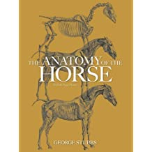 The Anatomy of the Horse (Dover Anatomy for Artists) by Stubbs, George (1976) Paperback