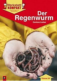 Meine große Tierbibliothek: Der Regenwurm: Amazon.de: Valérie ...