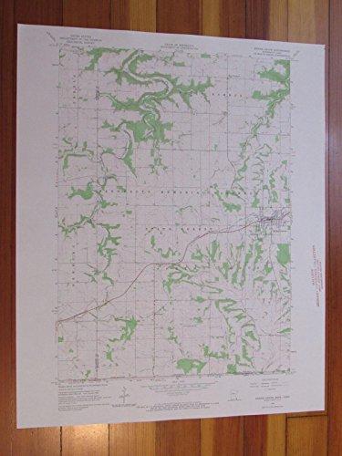 Spring Grove Minnesota 1966 Original Vintage USGS Topo Map (Grove Springs)