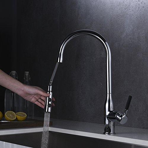 SURNORME Kitchen Faucet with Pull Down Sprayer Single Lever Pull Out Kitchen Sink Faucets Single Handle Tap (Pull Single Step Out)