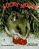 Lucky Mouse, Elizabeth Ring, 1562943448