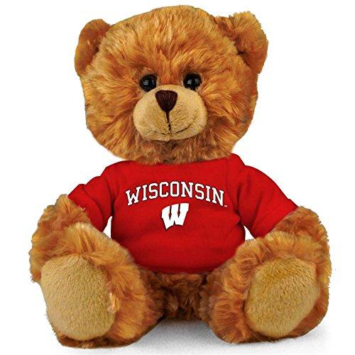 Wisconsin Badgers 8'' Plush Hoodie Bear ()