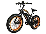 Electric Bicycle Fat Tire M-50 20 Inch Wheel Mini Electric Bike With 500W Motor 36V 10.4 AH Battery New Design 2018 (Orange)