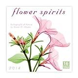 Flower Spirits 2014 Wall (calendar)
