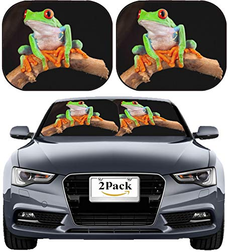 MSD Car Sun Shade Windshield Sunshade Universal Fit 2 Pack, Block Sun Glare, UV and Heat, Protect Car Interior, Image ID: 12440934 red Eyed Tree Frog at Night in Tropical - Sunshade Frog