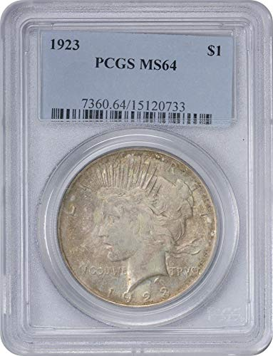 1923 Morgan Silver Dollar Cloudy Grey Toned Obverse MS64 PCGS (Toned Obverse)