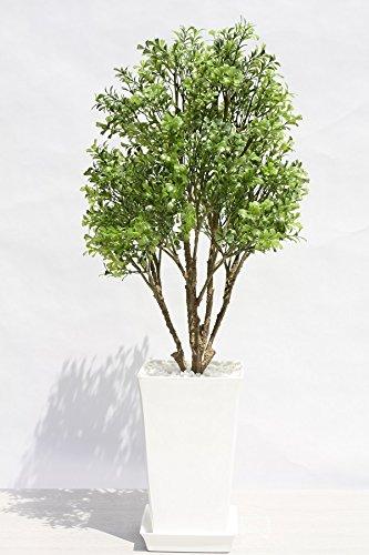 インテリアグリーン人工観葉植物、新ボックスウッドグリーン光触媒製品受け皿付き B01EWU1C3W