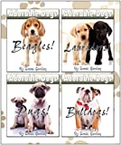 Adorable Dogs Collection Volume 1