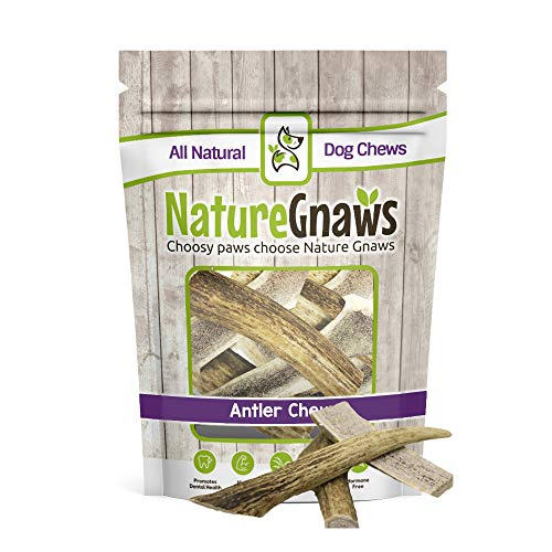Nature Gnaws Premium Usa Deer Antler Dog Chews 4-7 Inch (3 Pack)