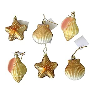 51F6oLNz9rL._SS300_ 100+ Best Seashell Christmas Ornaments