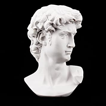 Airgoesin David Bust Sculpture Statue Resin Sketch Draw