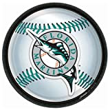 Florida Marlins Baseball - Round Dinner Plates Party Accessory