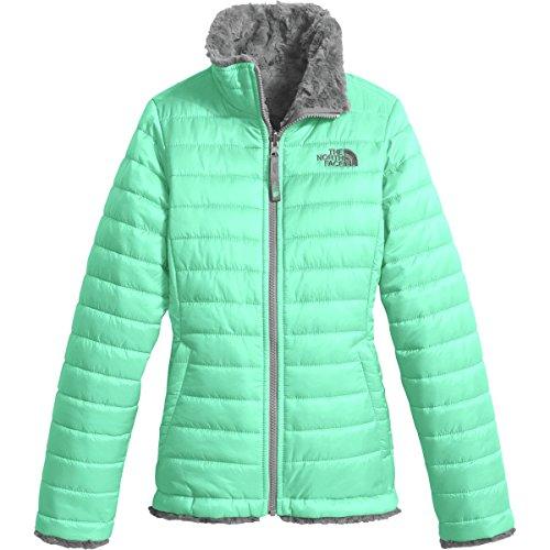 The North Face Kids Girl's Reversible Mossbud Swirl Jacket (Little Kids/Big Kids) Bermuda Green/Metallic Silver (North Face Mountain Light Jacket)