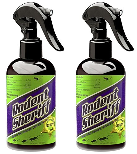 RODENT SHERIFF Pest Control Spray - Ultra-Pure Mint Spray - Repels Mice, Raccoons, Ants, and More - Made in USA (2) (Best Way To Kill Rats Outside)