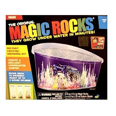 NSI Magic Rocks:Shark: Toys & Games