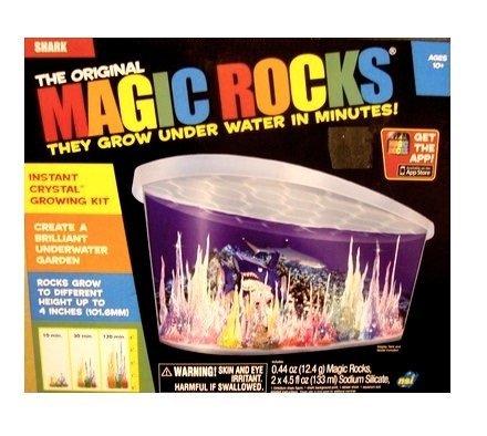 Magic Shark - NSI Magic Rocks:Shark