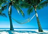 Paradise Beach Scene, Photography Poster Print, 24 by 36-Inch