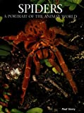 Spiders, Paul Sterry, 1597641448