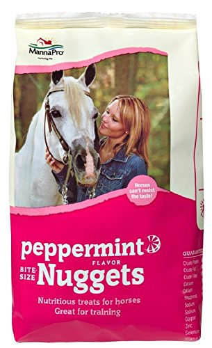 Peppermint Nuggets (Manna Pro 4 lb Bag of Flavored Bite Size Nuggets. Great for Training! (Peppermint))
